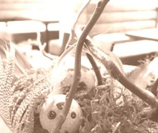 Ostern im Fabiano